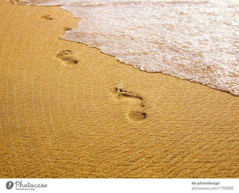 Footprints at the beach Relaxation Vacation & Travel Far-off places Summer Summer vacation Beach Sand Going To enjoy wave waves foam spum sunny stressed