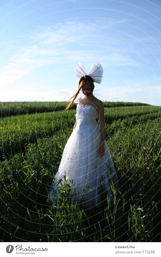 Human being Sky Youth (Young adults) Summer Clouds Loneliness Feminine Landscape Grass Sadness Field Wait Wedding Stand Longing Beautiful weather