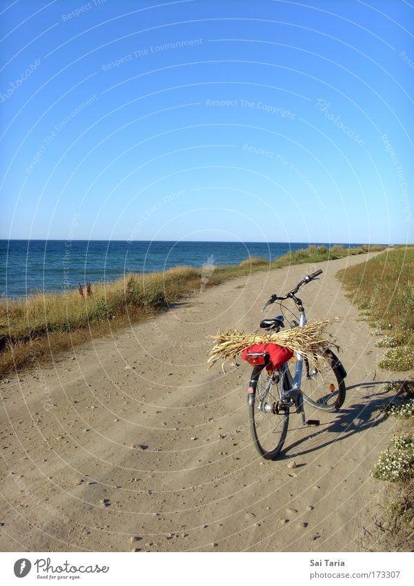 Joy Vacation & Travel Landscape Driving Serene Summer vacation