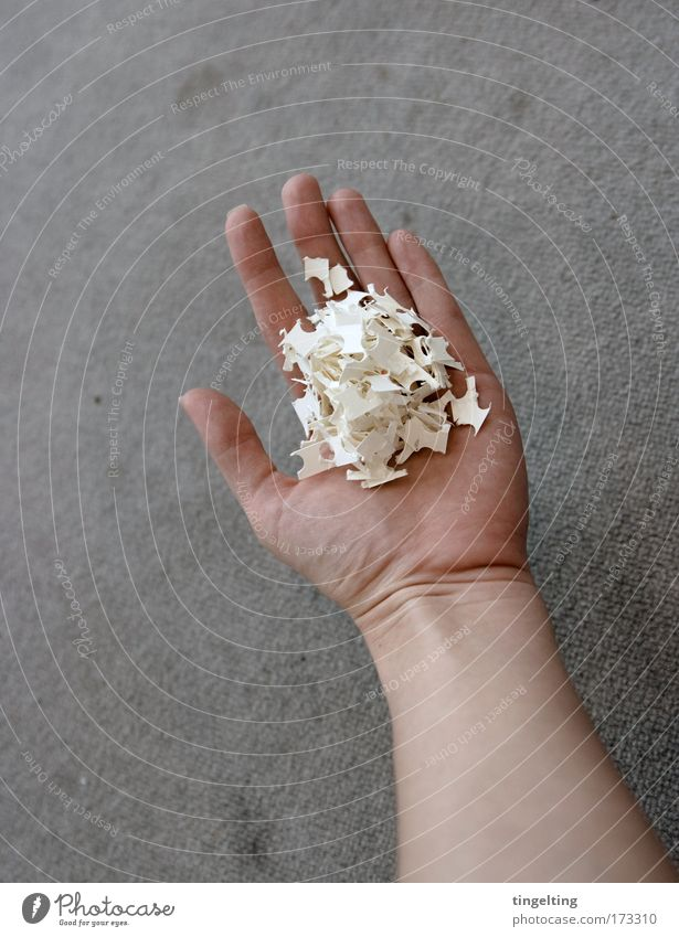 handful Design Feminine Arm Hand Fingers Snippets Paper Work and employment Build Simple Gray White Calm Diligent Skin Carpet pick up Tidy up Remainder