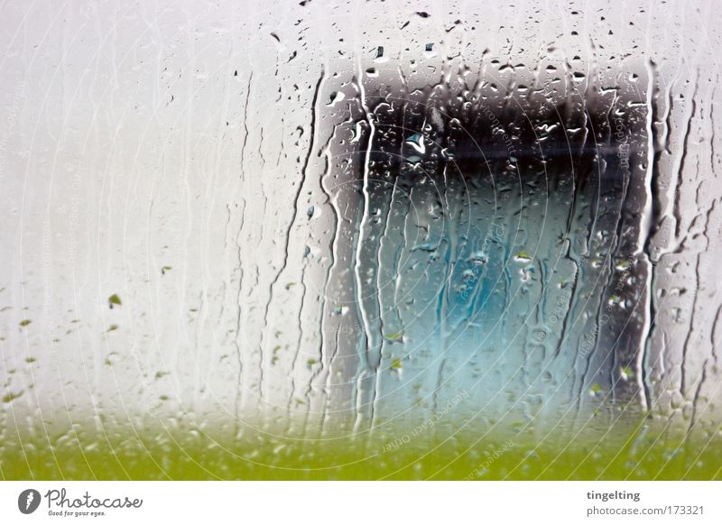 rain Colour photo Exterior shot Experimental Deserted Copy Space left Exhibition Water Drops of water Bad weather Rain Grass Meadow Wall (barrier)