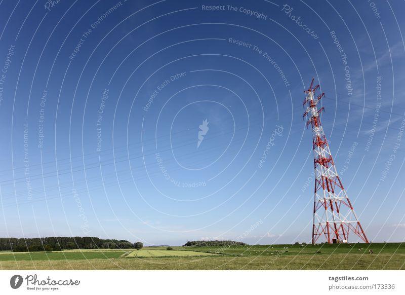 IF YA WIT'ME LET ME HEAR YA SAY MÄÄÄÄÄH! Dike Sheep Electricity pylon Mast High voltage power line Meadow Pasture Willow tree Willow-tree Northern Germany