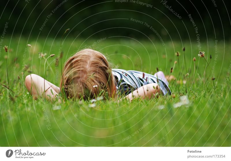 Human being Child Nature Blue Green Girl Summer Calm Relaxation Environment Meadow Landscape Grass Warmth Bright Infancy