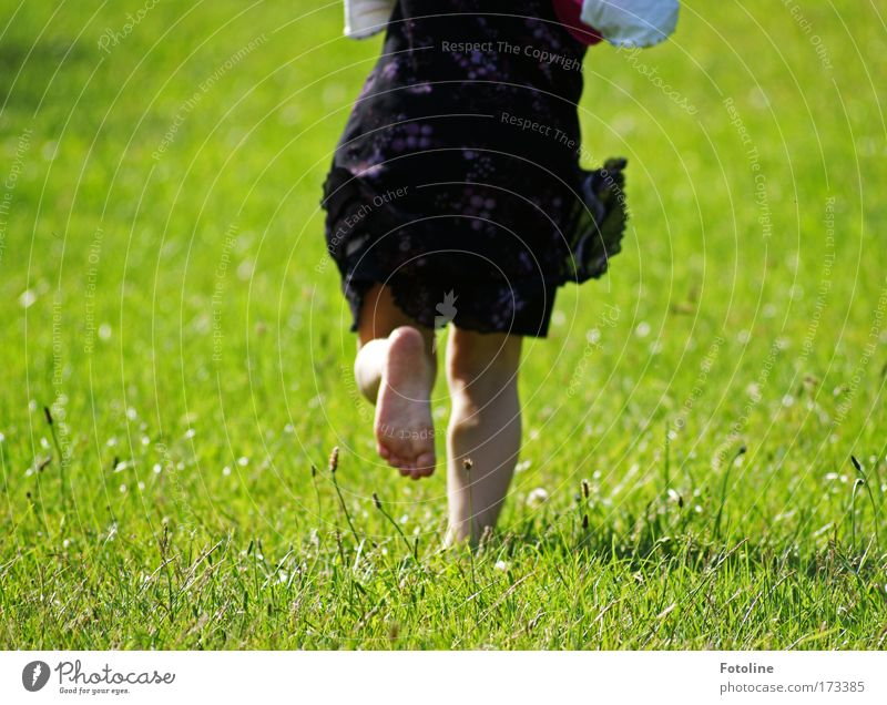 Run, Laura! Colour photo Multicoloured Exterior shot Day Sunlight Human being Girl Back Legs 1 3 - 8 years Child Infancy Environment Nature Landscape Earth