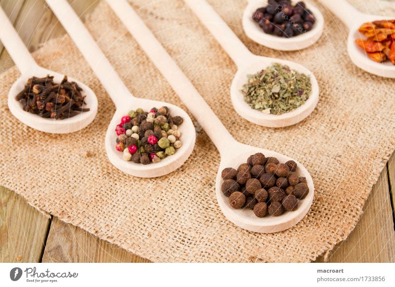 spices on spoons Herbs and spices Wooden spoon Clove Pimento Juniper Ingredients Spicy season Pepper Peppercorn Multicoloured Marjoram Basil Powder Fruit Dried