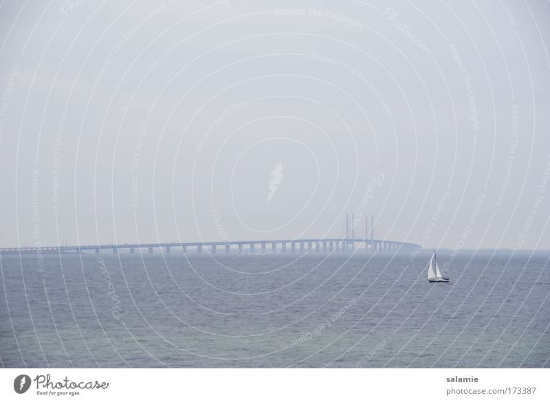 Wide sea Colour photo Exterior shot Evening Sailing Horizon Bad weather Baltic Sea Ocean Bridge Oeresund bridge Navigation Sport boats Sailboat Sailing ship