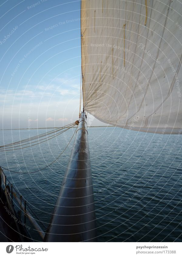 broadening of horizons Colour photo Exterior shot Deserted Copy Space left Day Twilight Contrast Central perspective Sailing Navigation Watercraft Sailboat
