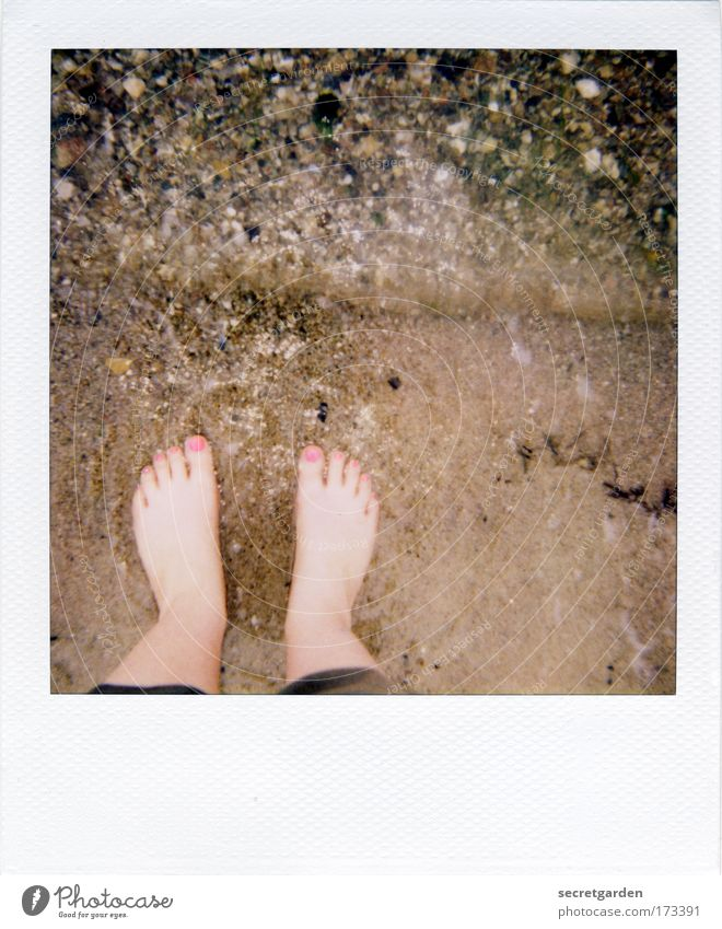 [KI09.1] Getting your feet wet. Colour photo Subdued colour Exterior shot Close-up Polaroid Copy Space top Copy Space middle Bird's-eye view Downward Elegant