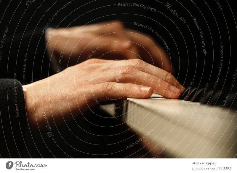 Piano Musical instrument Music Fingers Hand Piano Keyboard instrument Dexterity Effortless Skillful
