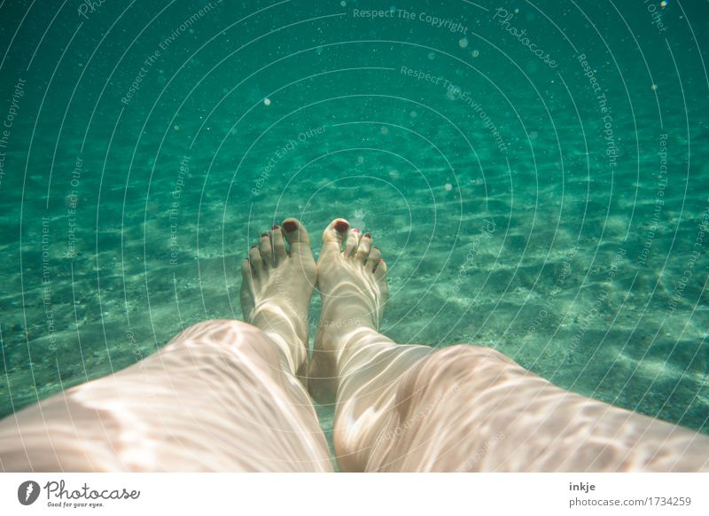 In the sea Wellness Leisure and hobbies Vacation & Travel Summer Summer vacation Beach Ocean Woman Adults Life Legs Feet Women`s feet 1 Human being Sand Water