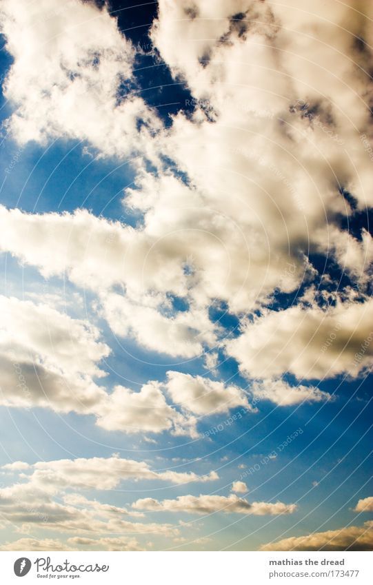 Nature Sky White Sun Blue Summer Winter Clouds Movement Gray Air Bright Change Infinity Beautiful weather