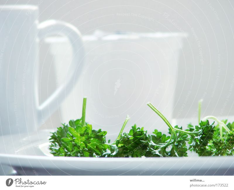 parsley on white plate - völlerei Herbs and spices Parsley Nutrition Organic produce Vegetarian diet Diet Fasting Plate Healthy Healthy Eating Cure Green White