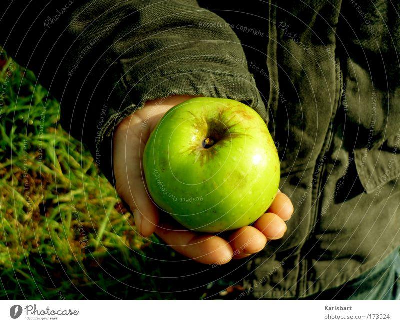 Human being Child Nature Hand Beautiful Environment Meadow Autumn Boy (child) Garden Healthy Field Power Fruit Infancy Food