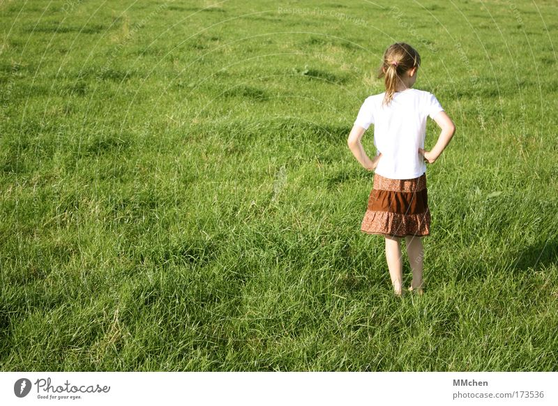 I'm standing here, fideldum. Colour photo Exterior shot Copy Space left Day Playing Adventure Feminine Child Infancy 1 Human being 3 - 8 years Nature Summer