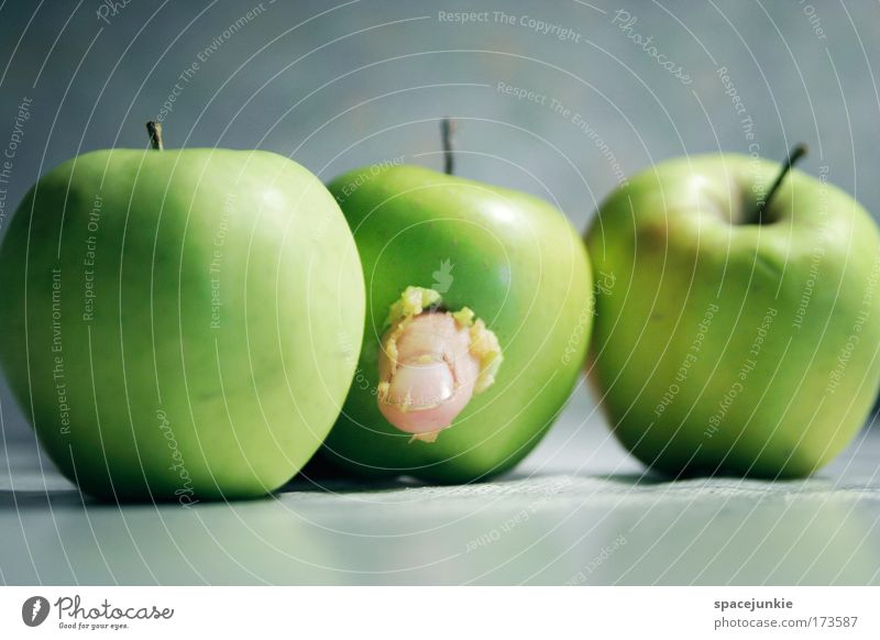 finger food Colour photo Interior shot Food Fruit Apple Nutrition Organic produce Vegetarian diet Finger food Life Fingers Movement To feed Hang Creepy