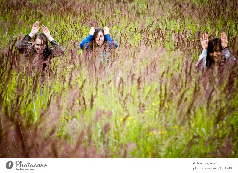 Human being Nature Youth (Young adults) Hand Plant Summer Joy Meadow Emotions Grass Head Group Friendship Together Natural Happiness