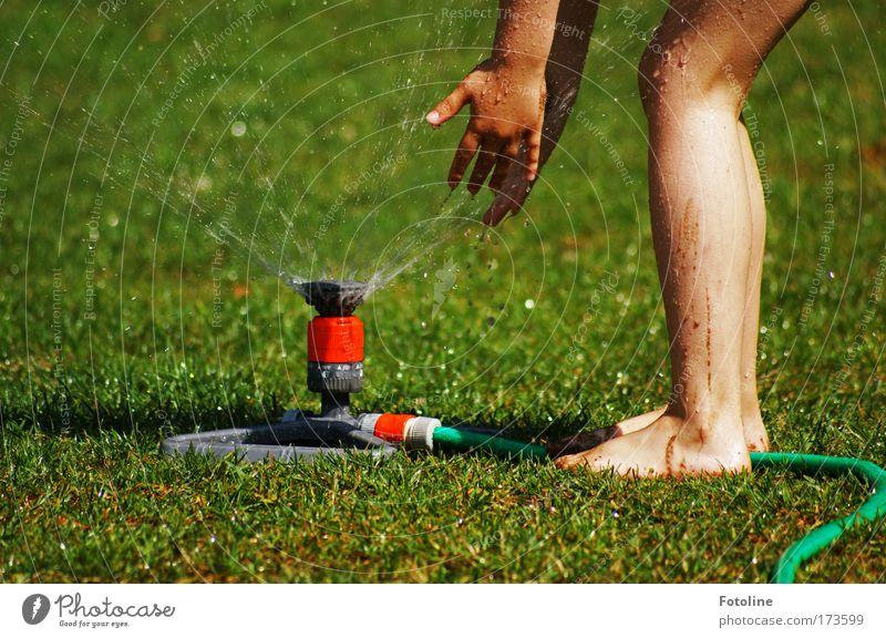 Human being Child Nature Water Hand Green Plant Sun Girl Environment Meadow Grass Warmth Garden Legs Feet