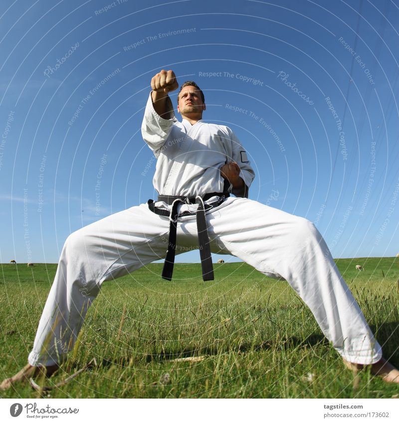 Man Black Power Force Posture Strong Guy Testing & Control Fight Fellow Blow Beat Belt Martial arts Defensive Karate
