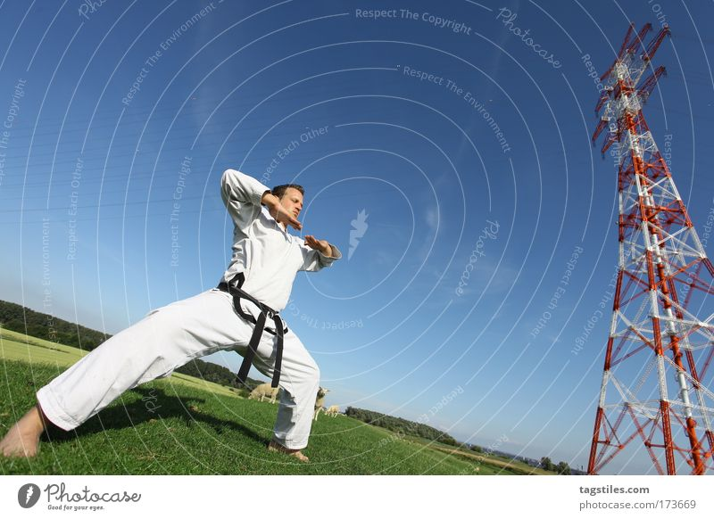 PULL ONESELF TOGETHER oneself pull together Taekwondo Karate Fighter Martial arts Martial artist Colour photo Copy Space Wide angle Posture Sebastian Clever