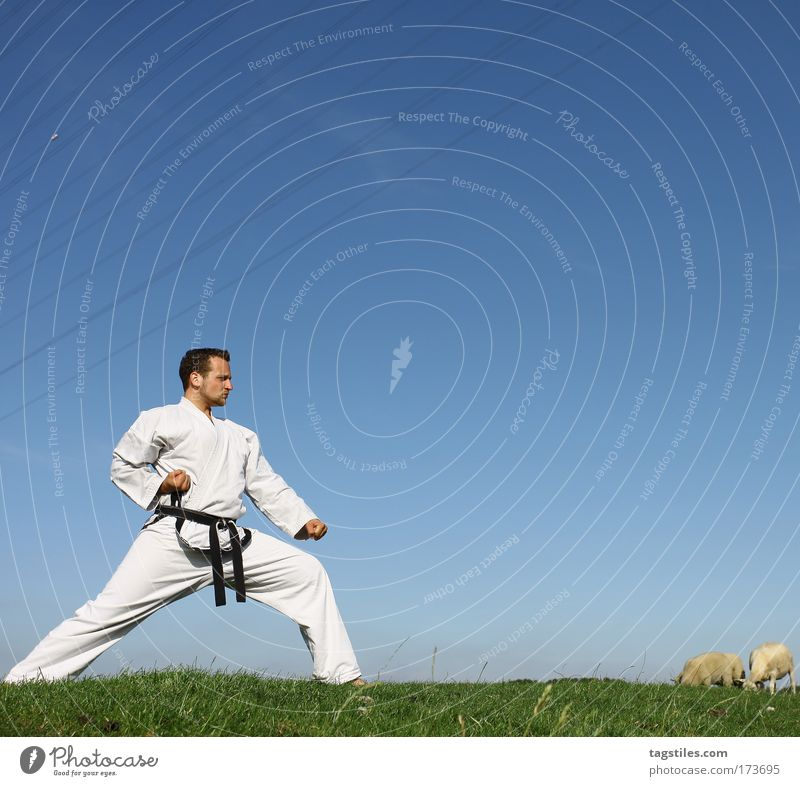 Man Black Power Force Posture Strong Guy Testing & Control Sheep Fight Fellow Blow Belt Claw Martial arts Defensive