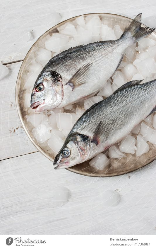 Dorado fish and sea bass on the metal plate with ice White Black Dish Wood Metal Fresh Nutrition Table Fish Still Life Plate Difference Raw Ingredients Preparation Dorado