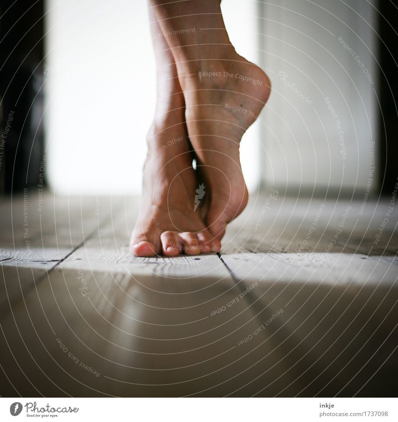 barefoot Lifestyle Leisure and hobbies Living or residing Wooden floor Woman Adults Feet Women`s feet 1 Human being Stand Wait Emotions Moody Esthetic