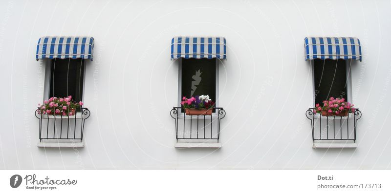 Blue White House (Residential Structure) Window Wall (building) Architecture Building Wall (barrier) Elegant Facade Stripe Weather protection Hotel Village Balcony Handrail