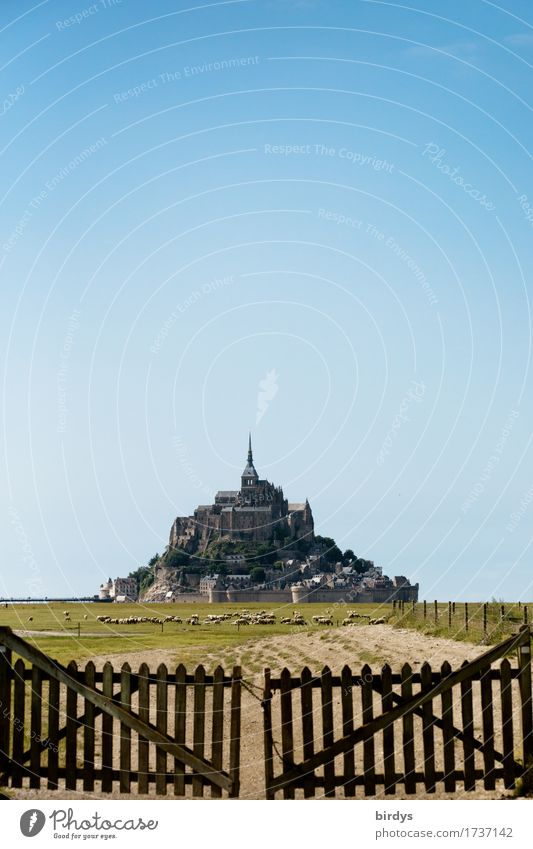 Mont - Saint - Michel at low tide Vacation & Travel Tourism Sightseeing Summer Summer vacation Agriculture Forestry Cloudless sky Beautiful weather Meadow Rock