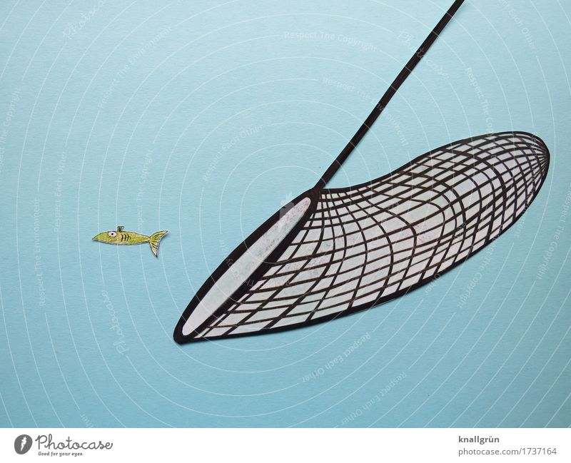 overfishing Animal Fish 1 Net Landing net Utilize Threat Blue Green Black Emotions Moody Responsibility Judicious Concern Fear of the future Dangerous