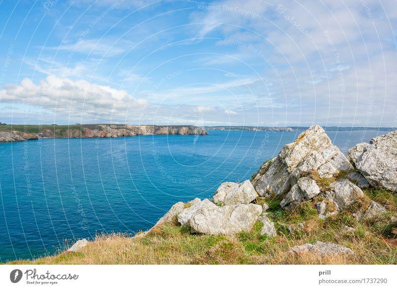 crozon peninsula in Brittany Summer Ocean Nature Landscape Plant Water Bushes Rock Coast Stone Tourism Environment Crozon peninsula Atlantic Ocean Finistere