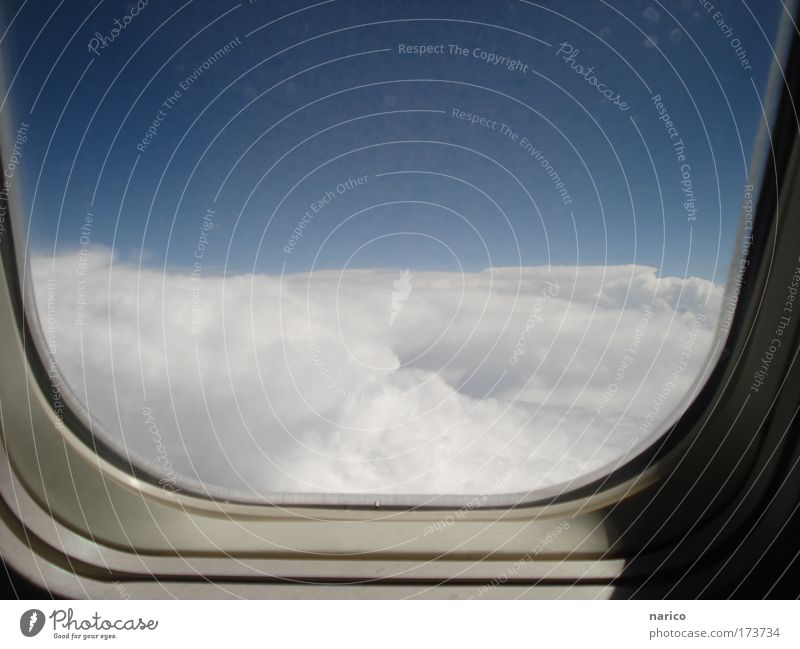 Sky White Blue Vacation & Travel Clouds Above Wait Airplane Flying Transport Tall Aviation Tourism Soft Idyll To enjoy