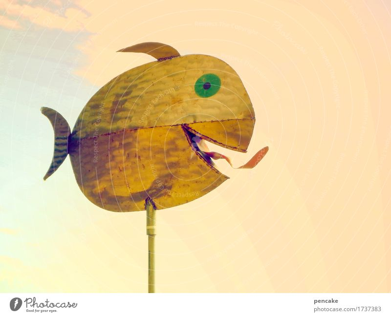 sole Art Work of art Sculpture Elements Sky Fish Metal Sign Cool (slang) Brash Happiness Hot Wild Design Joy Joie de vivre (Vitality) Tongue Eyes Marine animal