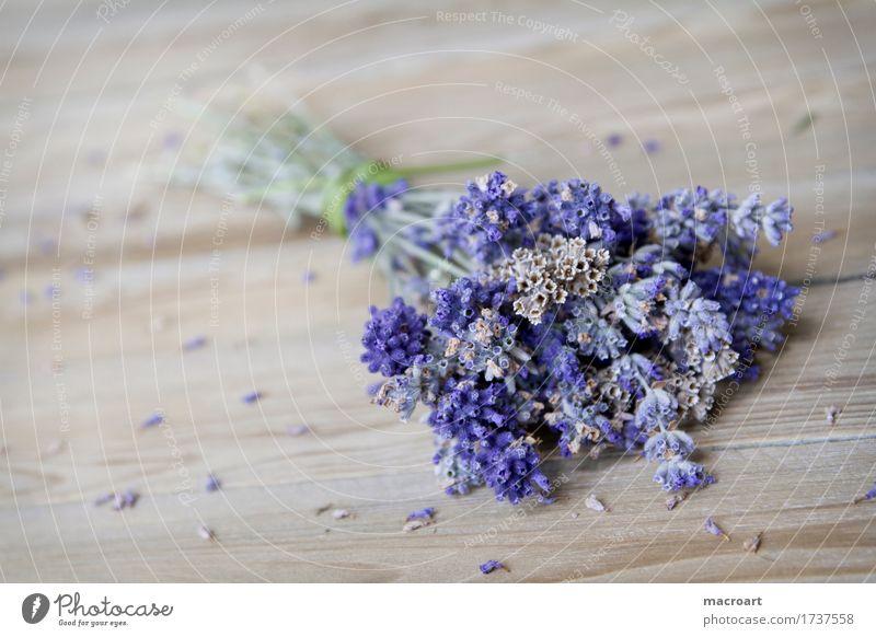 Lavender on wooden board floats Table Flower Blossom Violet Fragrance Odor sniffing Wooden table Board Comforting Medicinal plant Medication Soul angustifolia