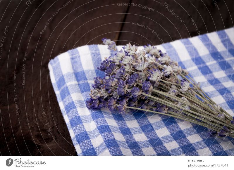 lavender Lavender floats Table Flower Blossom Bouquet Violet Fragrance Odor sniffing Wooden table Board Comforting Medicinal plant Medication