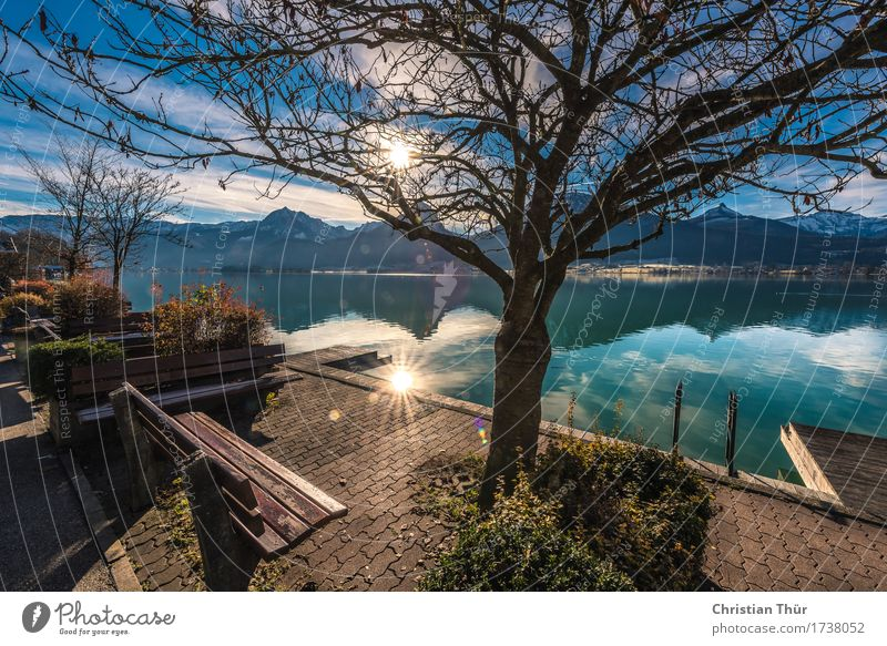 Lake Wolfgangsee Life Harmonious Well-being Contentment Senses Relaxation Calm Meditation Swimming & Bathing Vacation & Travel Tourism Trip Adventure Freedom