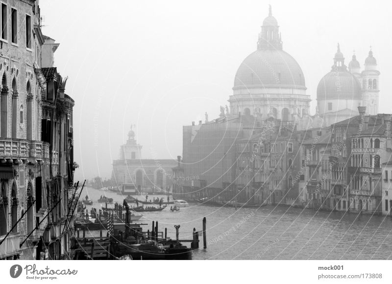 Venice in February Black & white photo Exterior shot Shadow Silhouette Central perspective Lifestyle Vacation & Travel Tourism Sightseeing City trip Winter Fog