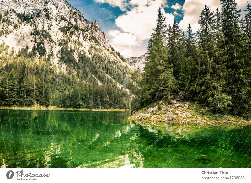 Green Lake Wellness Harmonious Well-being Contentment Senses Relaxation Calm Meditation Fragrance Tourism Trip Adventure Far-off places Freedom Camping Summer