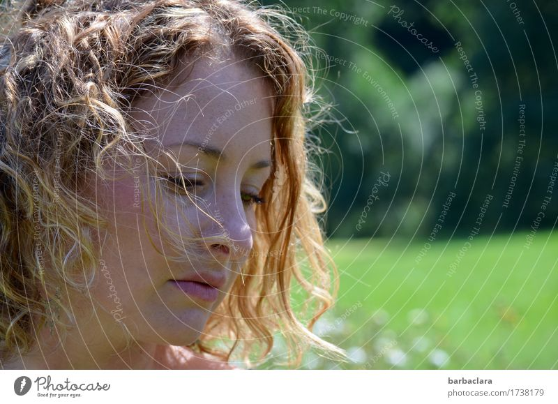 summer wind Feminine Woman Adults 1 Human being Nature Landscape Sun Summer Climate Wind Meadow Forest Blonde Curl To enjoy Natural Warmth Emotions Moody