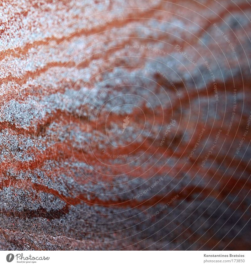 oxidation waves Colour photo Exterior shot Close-up Pattern Deserted Copy Space left Copy Space right Copy Space top Copy Space bottom Copy Space middle Day