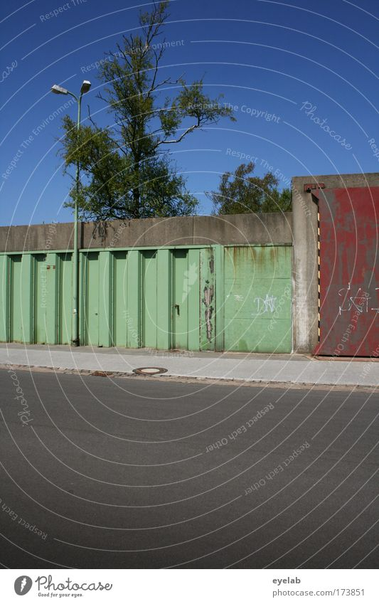Sky Old Tree Street Wall (building) Gray Coast Wall (barrier) Weather Facade Concrete Places Large Safety Gloomy Bushes