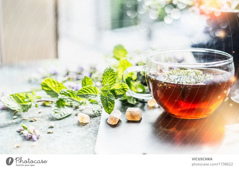 Cup with herbal tea at the window Food Herbs and spices Organic produce Vegetarian diet Diet Beverage Hot drink Tea Style Design Healthy Alternative medicine