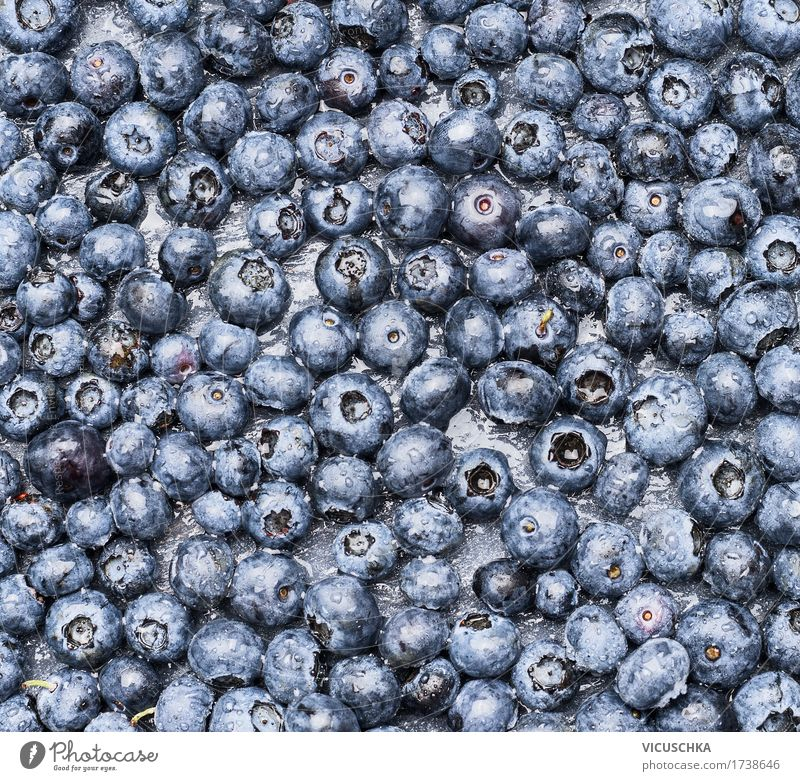 Blueberry Background Food Fruit Dessert Nutrition Organic produce Style Design Healthy Eating Life Nature Background picture Vitamin Berries Colour photo