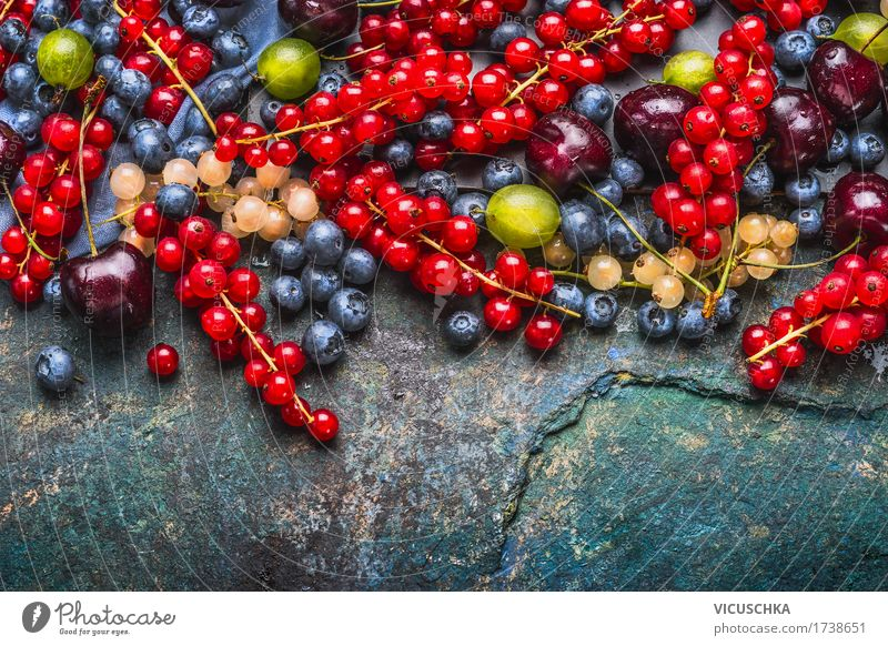 Delicious summer berries Food Fruit Nutrition Organic produce Vegetarian diet Diet Style Design Healthy Healthy Eating Life Summer Berries Selection Blueberry