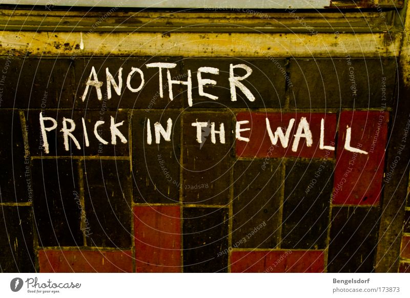 Another prick in the wall Lifestyle Wall (barrier) Wall (building) Facade Aggression Change Colour photo Subdued colour Interior shot Copy Space bottom Graffiti