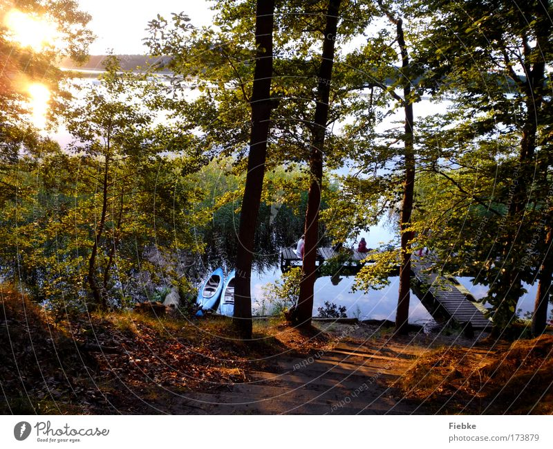 summer evening Colour photo Exterior shot Copy Space bottom Evening Reflection Sunlight Sunbeam Sunrise Sunset Back-light Fishing (Angle) Vacation & Travel