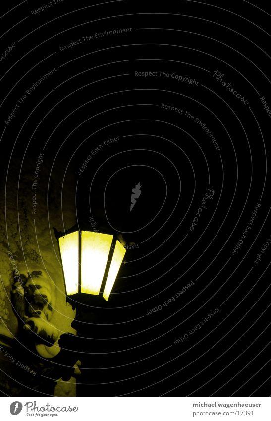 Old Dark Lamp Lantern Street lighting Night shot Dark background Lion's head
