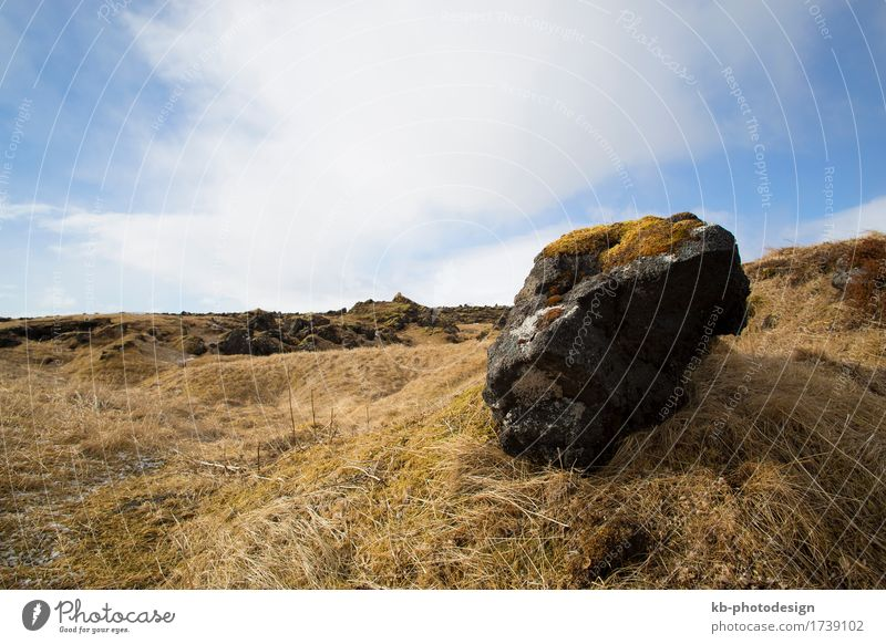 Basalt stones at Snaefellsnes peninsula, Iceland Vacation & Travel Tourism Far-off places Winter Nature Landscape Meadow Field Rock Snæfellsnes volcano
