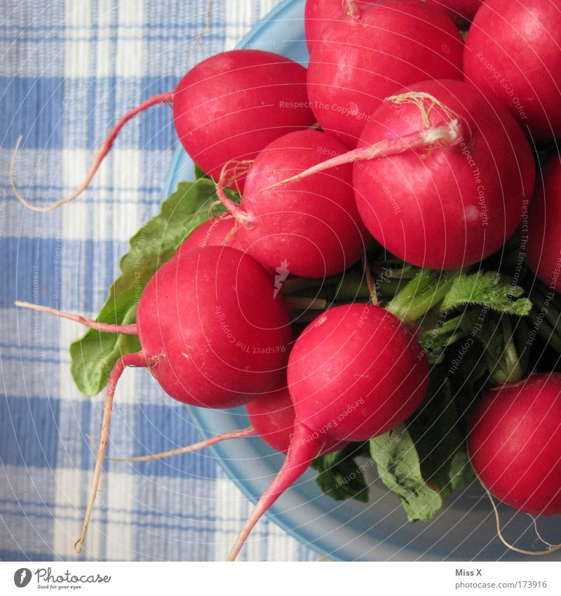 radish Colour photo Multicoloured Interior shot Close-up Detail Food Vegetable Nutrition Dinner Buffet Brunch Banquet Picnic Organic produce Vegetarian diet