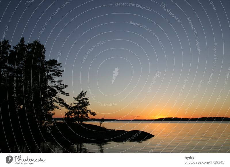 Midsummer sun on a skerry in Sweden with blue sky and some forest Vacation & Travel Summer solstice Summer vacation Sun Ocean Island Cloudless sky Horizon