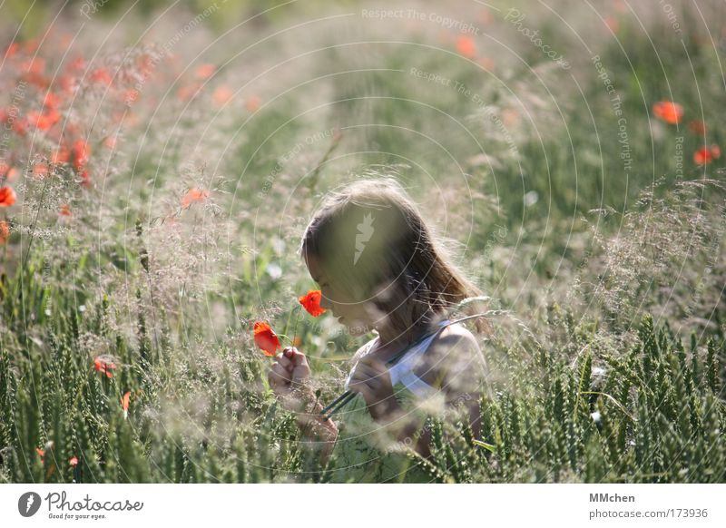 Human being Child Nature Green Red Vacation & Travel Girl Summer Flower Small Happy Infancy Contentment Field Wild Walking